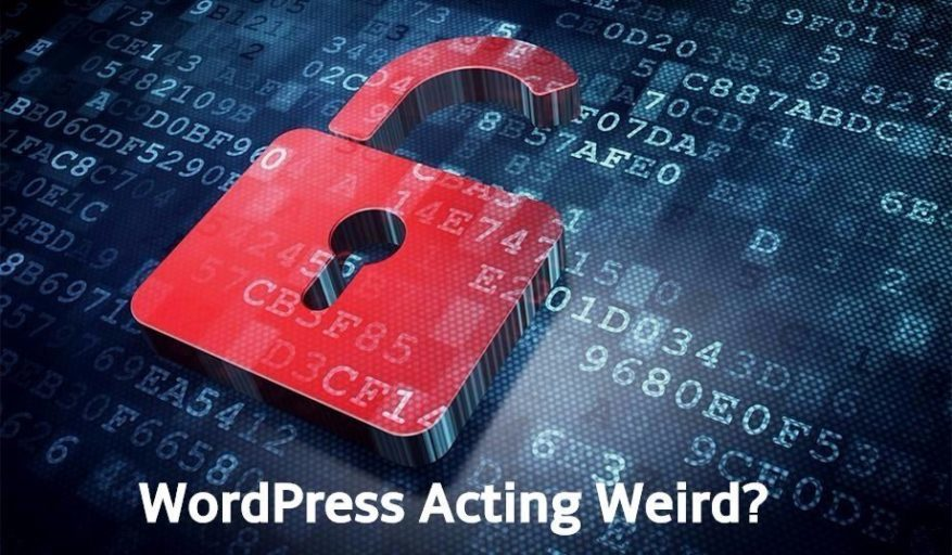 Fix WordPress Site Hacked